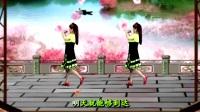 呂芳廣場舞經典老歌 好學舞《快樂老家》正背面及分解動作